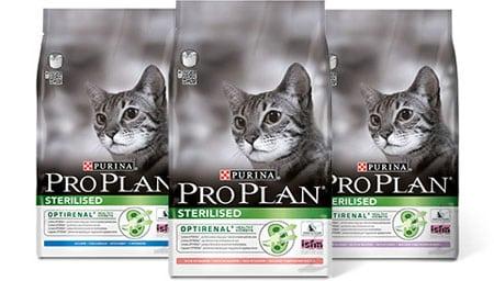 Правила питания кастрированных котов