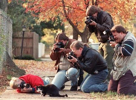 Как фотографировать необычных животных