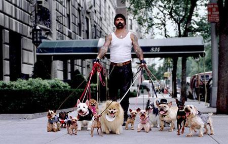Какая порода собаки – ваша?